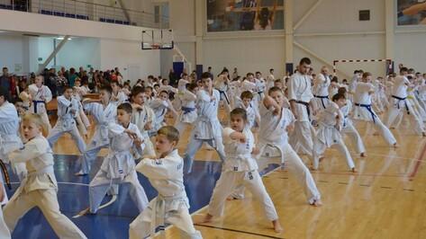 В Верхней Хаве 150 спорстменов сдали экзамен по Ашихара-каратэ