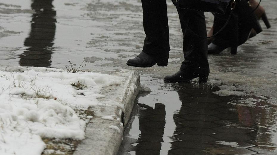 Мэр Воронежа уволил директора комбината благоустройства за плохую уборку снега