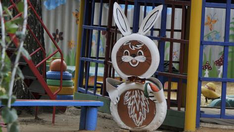 Проверки в воронежском детском саду №58 не подтвердили «грубость» педагога по ИЗО