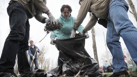 В Воронеже на общегородской субботник вышли более 40 тыс человек