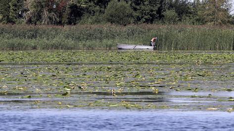 Воду в Воронежском водохранилище и реках региона проверят до 1 декабря 2019 года