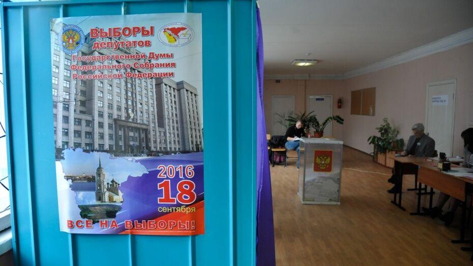 ЦИК потребует возобновить уголовное дело о фальсификациях на выборах в Госдуму в Воронеже