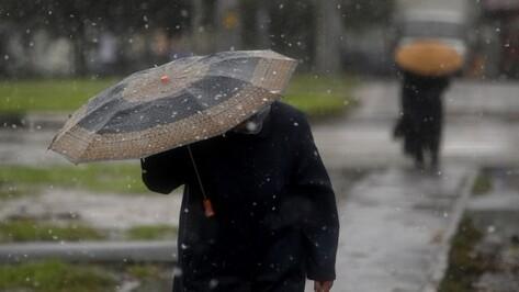 На выходных в Воронеже пойдет снег с дождем