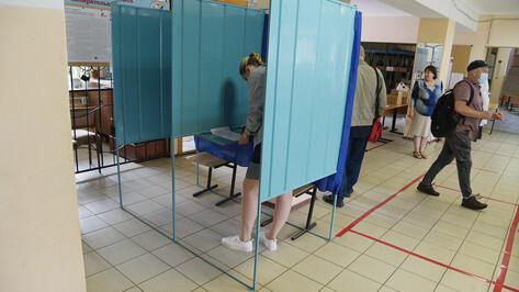 Поправки в Конституцию поддержали 71,74% жителей Воронежа