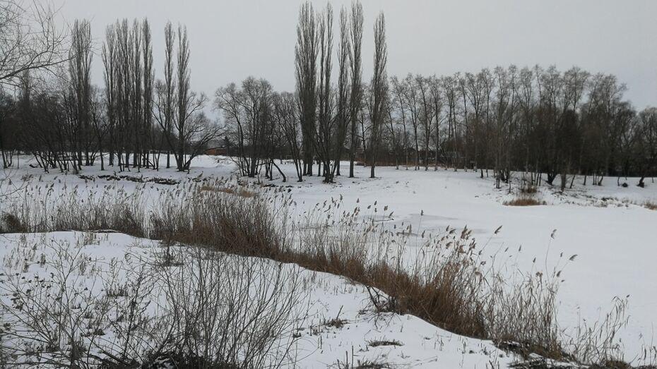 Под Воронежем случайный автомобилист спас провалившихся под лед детей