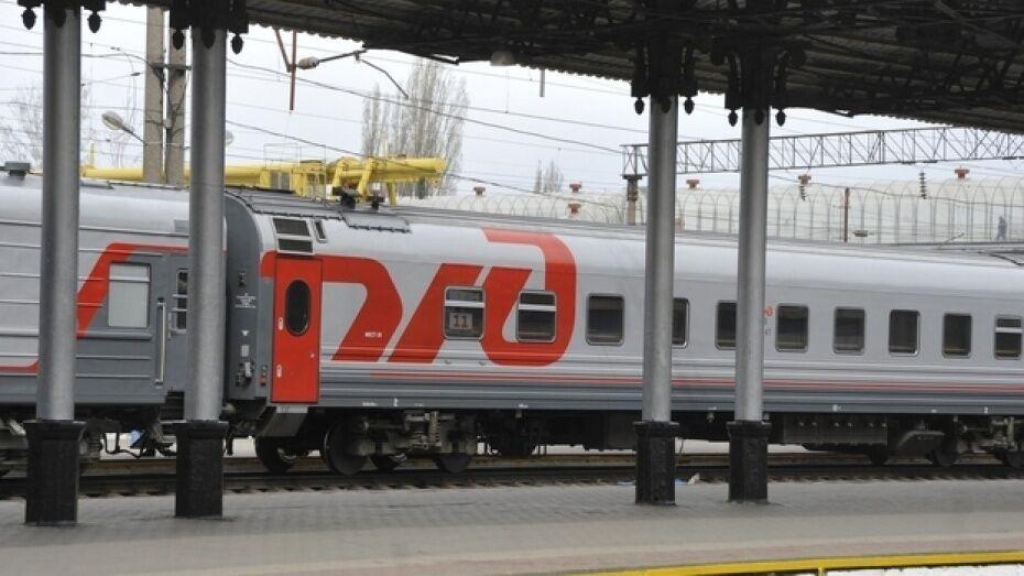 Поезд из Воронежа задержали из-за поломки грузового состава в Московской области