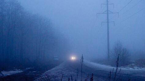 Туманы в Воронеже будут держаться до первых дней новогодних каникул