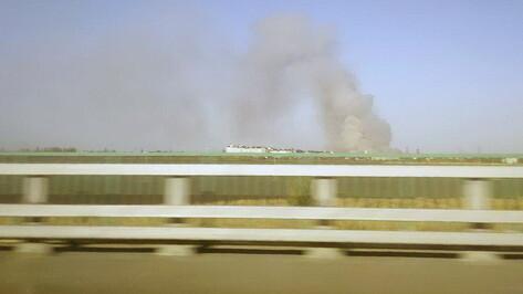 Ландшафтный пожар вспыхнул в поселке под Воронежем