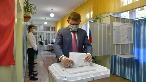 Спикер Воронежской облдумы проголосовал на региональных выборах