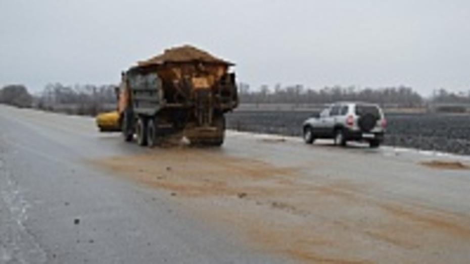 В Рамонском районе из-за ледяного дождя дорожники работали всю ночь