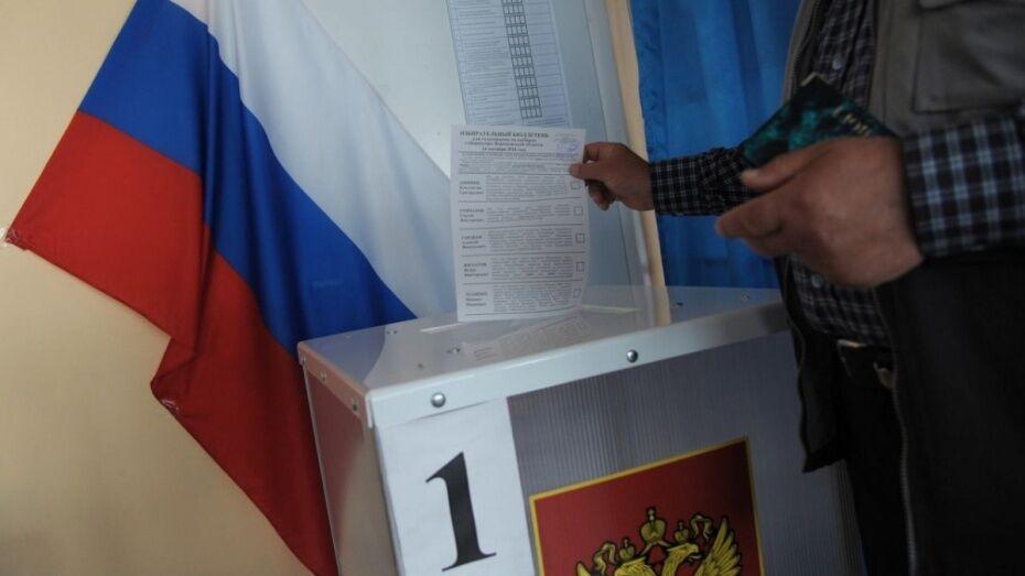 В Воронежской области стартовали выборы в органы местного самоуправления