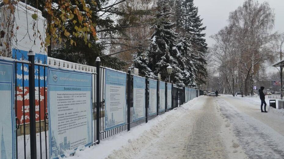 Как убирают снег в Воронеже и соседство туалета с памятником: что обсуждают в соцсетях