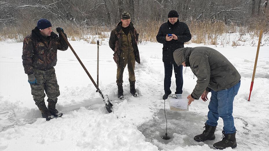 Виновников в загрязнении воронежской Усманки оштрафовали на 1,2 млн рублей