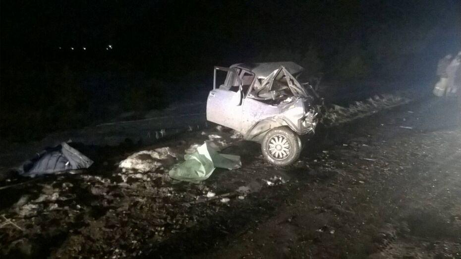 В Воронежской области трое мужчин разбились на «ВАЗе»