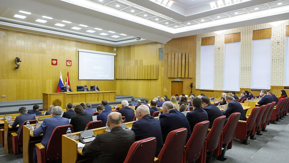 Бюджет Воронежской области на 2021 год приняли в первом чтении