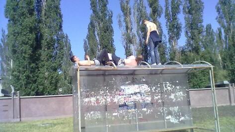 Новая неделя в Воронеже и области будет жаркой
