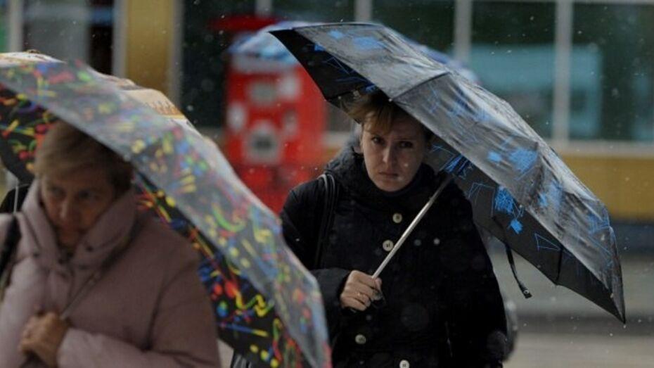 Снег и дождь пройдут в Воронеже в воскресенье