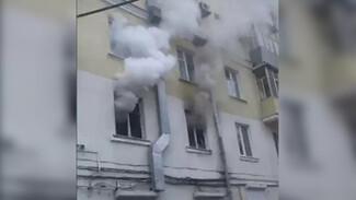 Около 20 животных погибли при пожаре в воронежской квартире