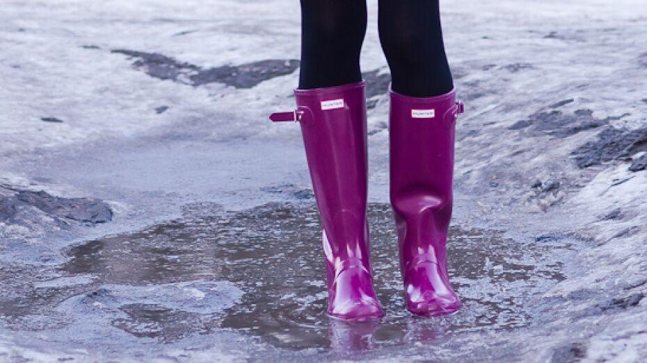 В феврале погода в Воронеже побила 6 температурных рекордов
