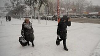 В Воронеже в день эстафеты олимпийского огня пройдет снег