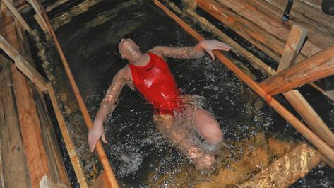 Воронежцы могут остаться безо льда на Крещение