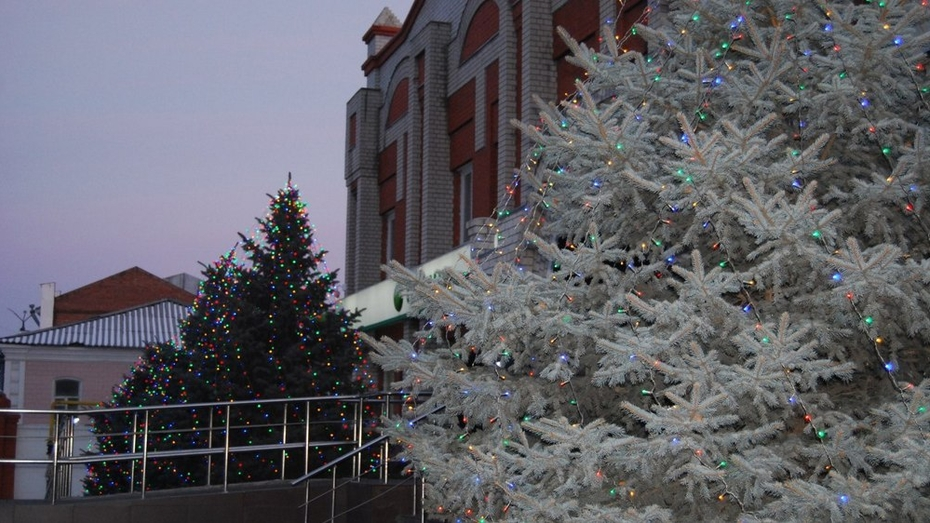 Воронеж получил 8 место в рейтинге Рождественских улиц России