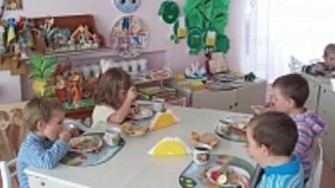Воронежские власти дадут льготы частным детсадам