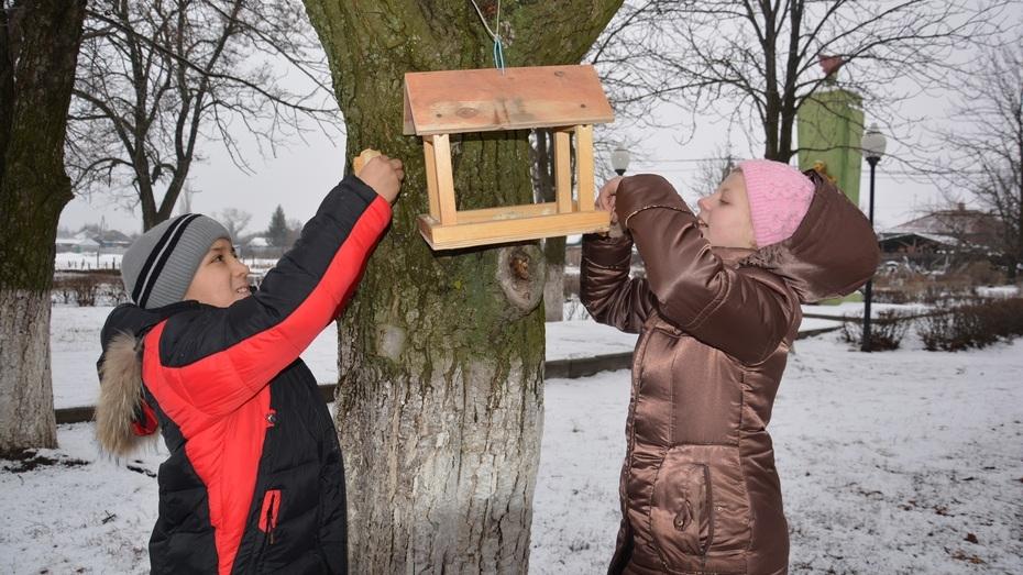 Поворинские школьники приняли участие в акции  «Покормите птиц зимой»
