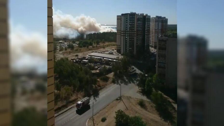 За больницей на левом берегу Воронежа начался пожар