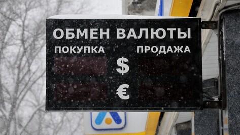 Черный декабрь год спустя. Как воронежцы приспособились к высоким курсам валют