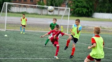 Футболист Роман Шишкин провел в Воронеже детский турнир