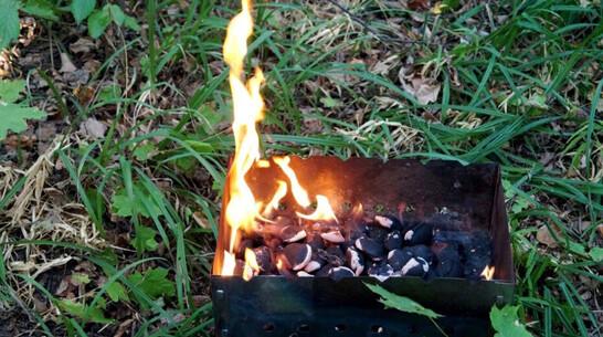 В Воронежской области 9-летний мальчик получил ожоги при розжиге мангала
