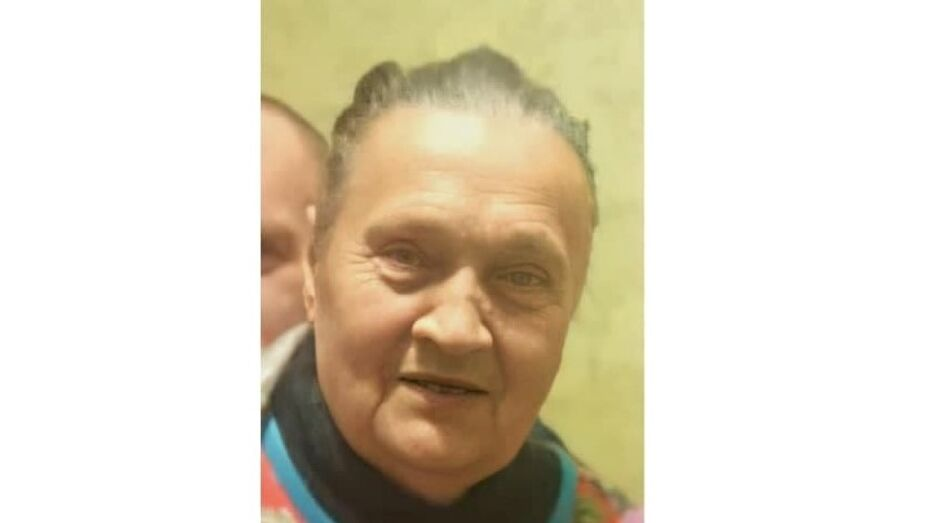 Волонтеры попросили помощи в поисках пропавшей в воронежском селе 81-летней бабушки