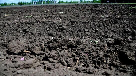Мошенничество с землей 24-летней давности раскрыли под Воронежем