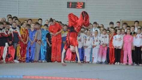 Воронежские ушуисты завоевали 12 золотых медалей на всероссийских турнирах