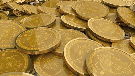 Хотевшая заработать на криптовалюте воронежская пенсионерка лишилась 800 тыс рублей
