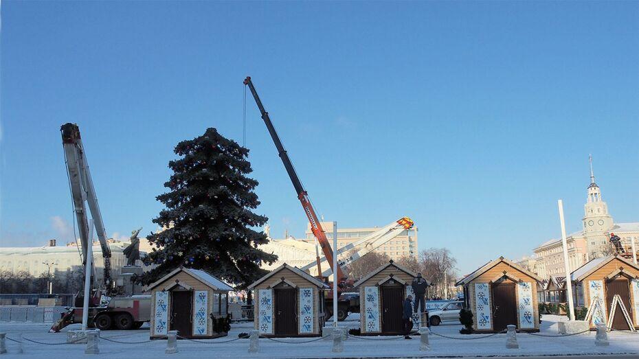 Елку на главной площади Воронежа уберут после 20 января