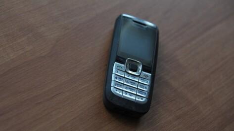 Лискинец украл из кафе монитор и мобильный телефон