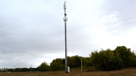 В Воробьевском районе установили еще одну вышку сотовой связи