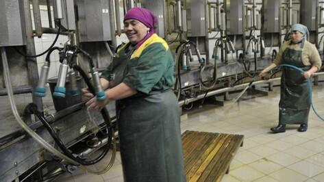 Воронежские власти предложат правительству РФ способы снизить наценку на молоко