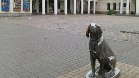 Мэрия Воронежа согласовала пикет «За цирк без животных»
