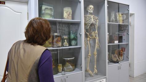 Лаборатория экспериментальной хирургии открылась в Воронеже