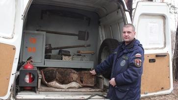 В Верхнехавском районе в заповеднике нашли авиационную бомбу