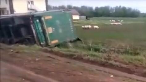 В Воронежской области в лобовом столкновении легковушки и грузовика погиб мужчина