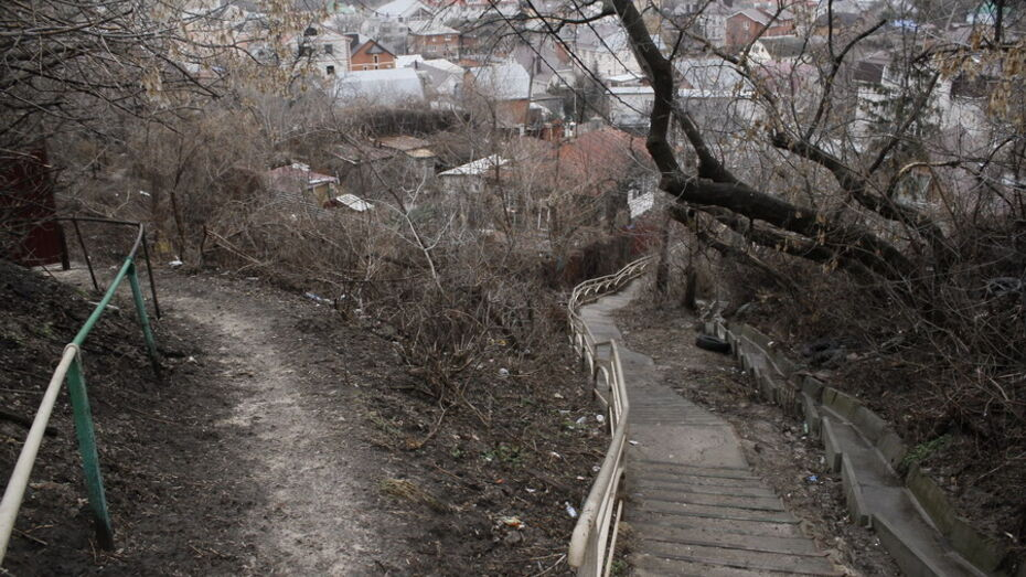 «Воронеж – петровский город». Как царь превратил неприметную крепость в столицу