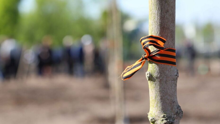 Патриотический open-air в Воронеже пройдет 21 мая