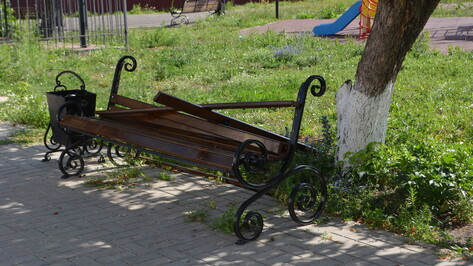 В Воробьевке хулиганы сломали 8 скамеек в парке «Кольцовский»