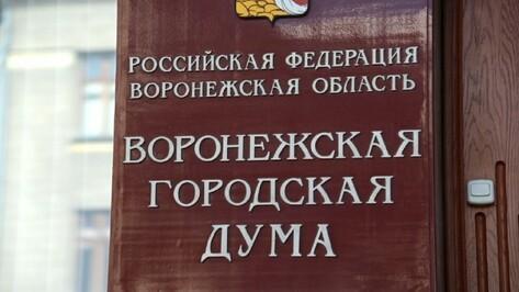 Депутаты Воронежской гордумы предложили отменить всенародные выборы мэра