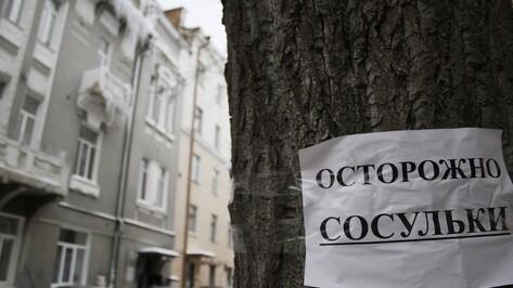 В центре Воронежа за день от снега и наледи очистят крыши 10 домов