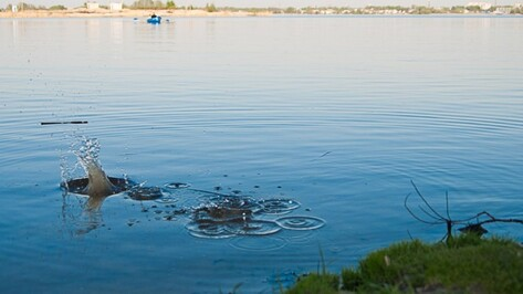 Роспотребнадзор назвал самые загрязненные водоемы Воронежа